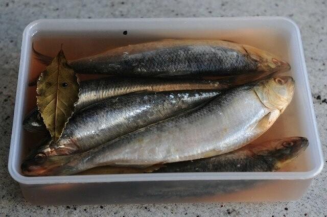 «Ловись, рыбка,  большая и маленькая!» из рубрики Домашний пир.